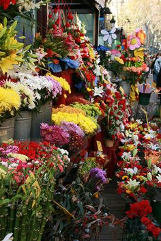 Barcelona ,La Rambla de las Flores my favorite part off being in Spain jrr Thanks Ramiro for sharing