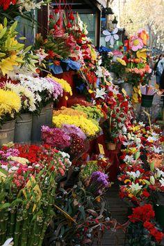 La Rambla - Barcelone - boutique de fleurs