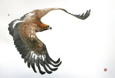 Karl Martens Golden Eagle (Framed) (Hungerford Gallery) Signed Watercolour on paper 39 x 59 in 100 x 150 cms (Framed size: x 164 cms) Karl Martens, Eagle Artwork, Eagle Drawing, Eagle Painting, Bird Artists, Bird Sketch, Human Figure Drawing, Golden Eagle, Watercolor Bird