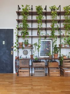 This sun-drenched space features high ceilings, industrial details and sparse modern furnishings. Warm woods and bold art balance sleek lines. And of course, there are plenty of plants.