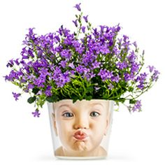 Je eigen foto op een bloempot