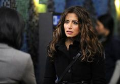 Sarah Shahi Person of Interest | Person of Interest Bumps Up Sarah Shahi's Samantha Shaw