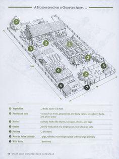 Quarter acre homestead plan