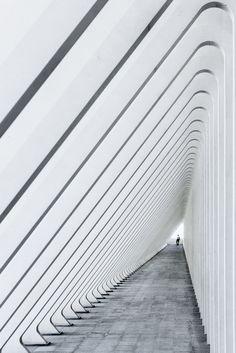 Guillemins train station, Liège, by Santiago Calatrava. Completed 2009.