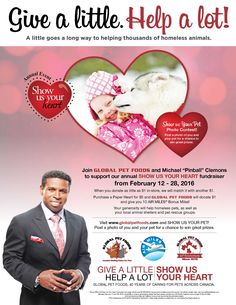 "From February 12 - Global Pet Foods and Michael ""Pinball"" Clemons ask for your help to care for pets in need. Visit your neighbourhood Global Pet F. Pet Food Store, Animal Shelters, Local Shelters, February 12, Show Us, Paper Hearts, Pinball, Photo Contest, Organizations"