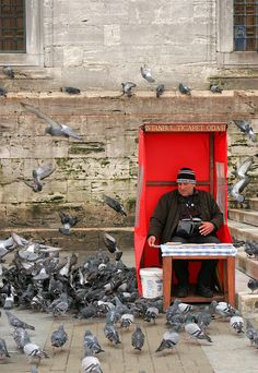 The Pigeon Man - bird seed seller, Istanbul