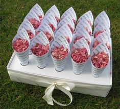 Confetti Cones - fully personalised confetti cones and delphinium petal confetti Wedding Sash, Our Wedding, Biodegradable Confetti, Confetti Cones, Wedding Confetti, Handfasting, Wedding Ceremony Decorations, Delphinium, Real Flowers