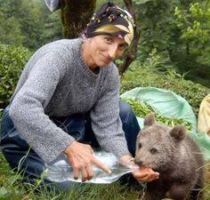 Kaybolan yavru ayıya eliyle su içiren Karadeniz kadını.