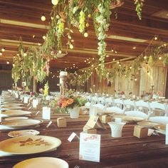 Stunning floral decor Tocal Homestead
