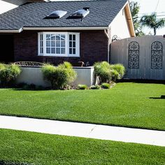 PreGra BlueGrass Artificial Grass Sold by the Linear oz. Faceweight Wide by Any Length you Need, in One Foot Increments Front Yard Decor, Front Yard Design, Front Yard Landscaping, Landscaping Ideas, Front Fence, Layout Design, Lawn Care Tips, Constantino, Patio Layout