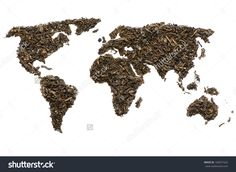 World Map Made Of Green Tea, Isolated On White Stock Photo 160977422 : Shutterstock