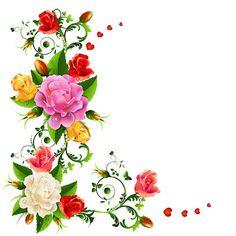 Las fotos más hermosas de rosas de colores (16 imágenes) | Banco de Imágenes, Fotos y Postales...