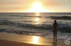 Polihale State Beach Park in Waimea, Kauai, Hawaii   Hawaiian Beach Rentals