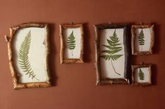 Fern leaf nature art Beech wood frame Slavic herbal rustic
