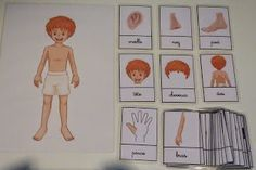 Crapouillotage: Cartes de Nomenclatures : CORPS HUMAIN Montessori Education, Montessori Materials, Kindergarten, Learning English For Kids, Body Systems, Learning Environments, Home Schooling, Learn French, Special Education