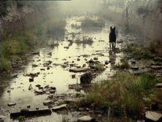 Stalker (1979) Directed by Andrei Tarkovsky / Cinematography by Alexander Knyazhinsky