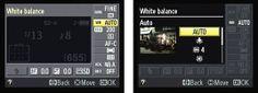 White setting controls for Nikon D5100
