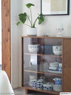 vitriini,viherkasvi,kirppislöytö,peikonlehti,kirppislöytöjä