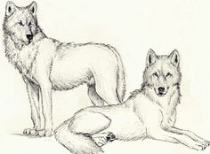 wolf drawing rei and saru by rubymoon26.deviantart.com