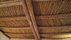 Pinterest Ceilings Tongue And Groove Ceiling And Sustainable Living