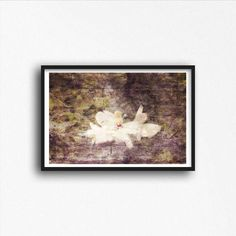 Grunge Magnolia Flower Photograph Distressed Photography Print Wall Decor Art Photo Dramatic Art White Floral Bloom by SusanGottbergPhotos on Etsy