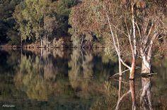 Reflejos en el río Guadalmez (Spain)