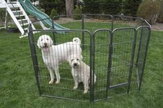 Iconic Pet - Heavy Duty Metal Tube pen Pet Dog Exercise and Training Playpen - 4 Sizes