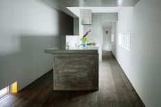 WORKS ::: プロムナードになる家 ::: Promenade House ::: FORM / Kouichi Kimura Architects ::: フォルム・木村浩一建築研究所