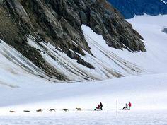 Dog-sledding in Alaska: http://www.usatoday.com/story/travel/cruises/2014/07/03/dog-sledding-alaska/9434091/