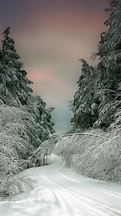 A winter drive in Vermont.I want to go see this place one day.Please check out my website thanks. www.photopix.co.nz