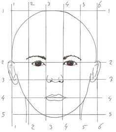 portret schema met verhoudingen