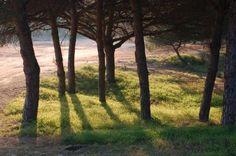 Praia Verde - Algarve - Surrounding photographs from Praia Verde Real Village Resort