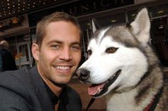 Eight Below