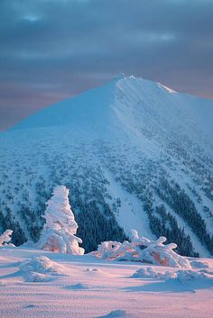Vertical Limit, beautiful snowy peak with soft pastel sky