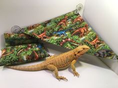 Dinosaur - Green Bearded Dragon Hammock, bed, and pillow set
