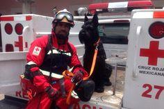 #ProductosEMS en acción: Mochila de cintura First In Fire de Meret y Guantes R21 Rescue de Ringers Gloves apoyando a los Profesionales en Cruz Roja Mexicana   para iniciar entrenamiento con Max ☺  EMS Mexico | Equipando a los Profesionales