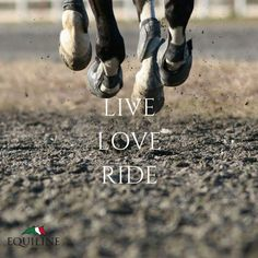 Live. Love. Ride. | A saying that embodies every equestrian's passion. http://www.tier-kleinanzeigen.com