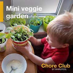 Chore Club: Turn everyday chores into fun ways to teach everyday lessons. Indoor Activities For Kids, Toddler Activities, Learning Activities, Easy Lunches For Kids, Kid Lunches, Easy House Plants, Building For Kids, Planting Vegetables, Project Based Learning
