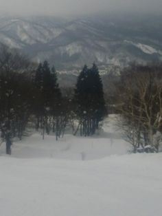 Myoko Snow Report - 23 January 2015. Today we have light snowfalls with 15cms accumulating on the ground this morning.