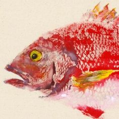 Red Snapper  Gyotaku Fish Rubbing  Limited Edition by fredfisher, $55.00