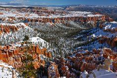 Bryce Canyon, USA Bryce Canyon, Grand Canyon, Cool Landscapes, City Photo, I Am Awesome, Usa, Nature, Travel, Photography