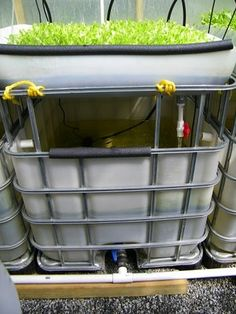 Aquaponics system setup, thoughts, ideas and some links.  Aquaponics systems can be as simple or as complex as you would like to make them. The choices are numerous. You can find honest reviews of 3 of the best plans by visiting my site here:  http://aquaponicssurvivor.com/aquaponics-systembuild/