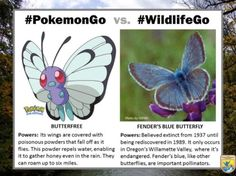 These digital trading cards compare Pokémon to real-life rare and wonderful species.