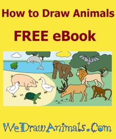 how to draw a arctic fox step by step easy