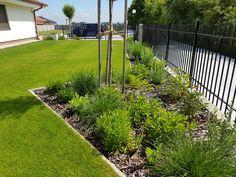 Rodinná záhrada v Galante. Sidewalk, Side Walkway, Walkway, Walkways, Pavement