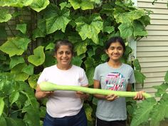 """Trying to grow Trombetta squash in NJ using growbox for the first time. Results are unbelievable. Squash are doing great and today's pick measured at 36"".  -Madhulika & Anuvi G."