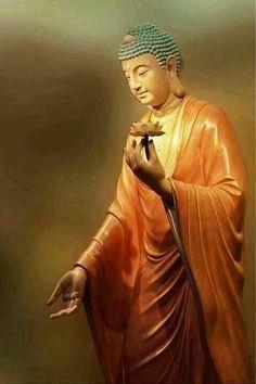 Buddha Amitabha holding a flower Lotus Buddha, Buddha Zen, Buddha Buddhism, Buddhist Art, Amitabha Buddha, Mahayana Buddhism, Buddha Temple, Religion, Psychedelic Art