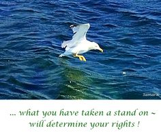 ... what you have taken a stand on ~ will #determine your #rights !