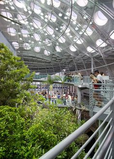 California Academy of Sciences, Renzo Piano