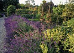 Tintinhull Garden, Farm Street, Yeovil, Somerset 3